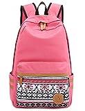Leaper Causal Style Canvas Laptop Bag/ Shoulder Bag/ School Backpack/ Travel Bag/ Handbag with Embroidery Design (Pink)