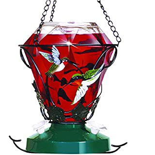 Birdscapes 701 Hummingbird Edition 24-Ounce Glass Hummingbird Feeder