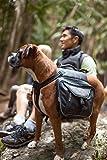 EzyDog Summit Hunde-Rucksack, Größe S, schwarz -