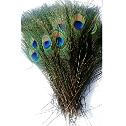 KOLIGHT®300pcs Peacock Feathers 10''-12'' Natural Feathers Wedding, Party ,Home ,Hairs Decoration