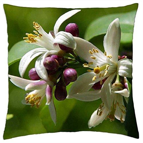 "LEMON TREE BLOSSOM - Throw Pillow Cover Case (18"" x 18"")"