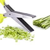 Besiva Multipurpose 5-blade Herb Scissors Cleaning Brush Time-Saving Kitchen Shears