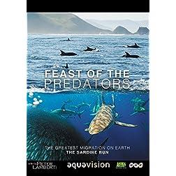 Feast of Predators