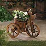 Potted Tricycle Plant Holder