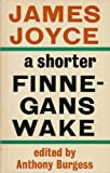 Finnegans Wake (Faber paper covered edition) (057106700X) by Joyce, James