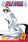 Bleach: Volume 22 (Bleach): v. 22