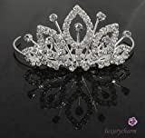 NEW PRINCESS Wedding Flower Girl Crystal Crown Tiara T6