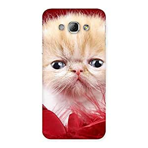 Enticing Kitty In Red Fur Back Case Cover for Galaxy A8