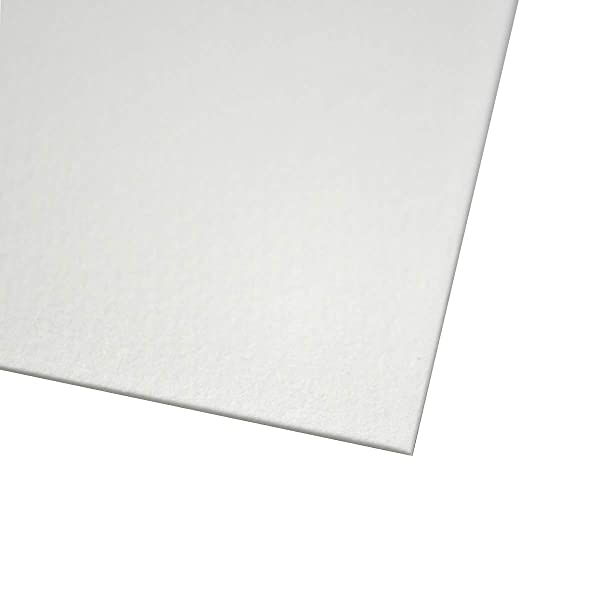 Bee Paper 1153P10-2230 Watercolor Sheet , 22 x 30-Inches, Pack of 10 (Color: White, Tamaño: 22-inch x 30-inch, 10 Sheet Pack)