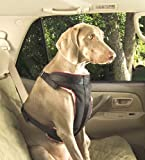 Solvit Pet Vehicle Safety Harness, Extra-Large