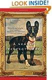 A Nearly Perfect Copy: A Novel