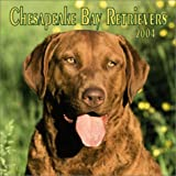 Chesapeake Bay Retrievers 2004 Calendar