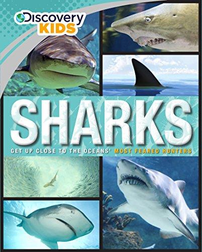 Sharks (Discovery Kids)