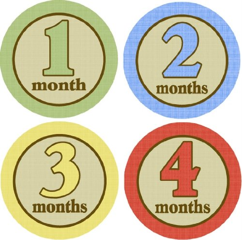 Country Road Monthly Baby Bodysuit Stickers