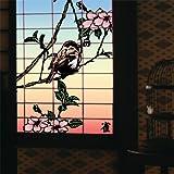 Suzume: 13 Japanese Birds, Vol. 1