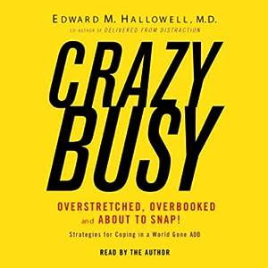 CrazyBusy Audiobook