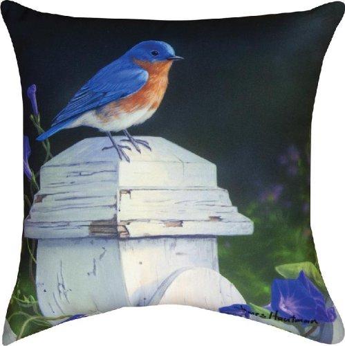 Manual Indoor/Outdoor Pillow, Picket Fence Blues X James Hautman, 18-Inch front-1025944