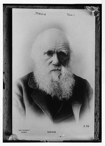 Photo Darwin, Charles Carlyle 1900