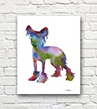 """Chinese Crested"" Dog Abstract Art Print By Artist Dj Rogers"
