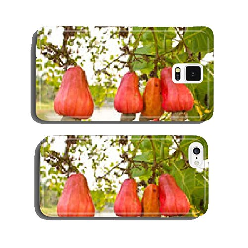 cashew-nuts-growing-on-a-tree-cell-phone-cover-case-samsung-s5