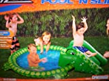 Banzai Alligator swimming pool N Slide/Alligator Pool/Banzai Alligator Pool