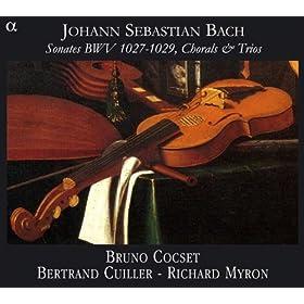 Sonate En Sol Mineur, BWV 1029: II. Adagio