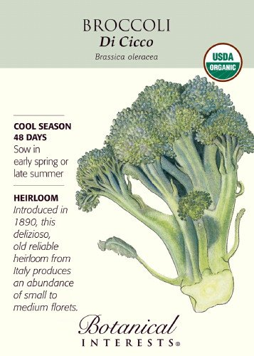 Vegetables That Can Be Frozen front-521866