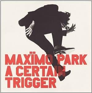 A Certain Trigger [VINYL]