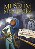 img - for The Case of the Stolen Space Suit (Museum Mysteries) book / textbook / text book