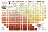 True Fabrications DeLong's Wine Varietal Table Poster