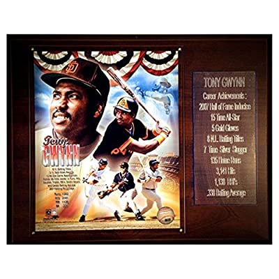 C and I Collectables MLB 15W x 12H in. Tony Gwynn San Diego Padres Career Stat Plaque