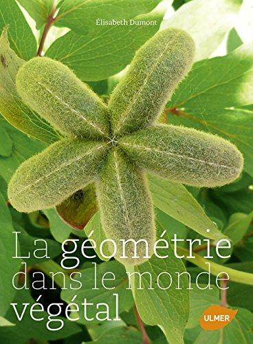 La géométrie dans le monde végétal