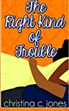 img - for The Right Kind Of Trouble (Volume 3) book / textbook / text book