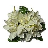 HAWAIIAN SILK WHITE TUBEROSE FLOWERS HAIR CLIP