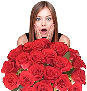 Flowers For Delivery -Impress Her With 25 GIANT, RED (Or Choose Color) Incredibly Fragrant Long Stem Roses-FREE GIFT MESSAGE - Top Rated Roses On Amazon from Spring in the Air Luxury Roses - Will WOW Your Recipient!