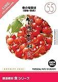 創造素材 食55 春の旬食材(果物・野菜)