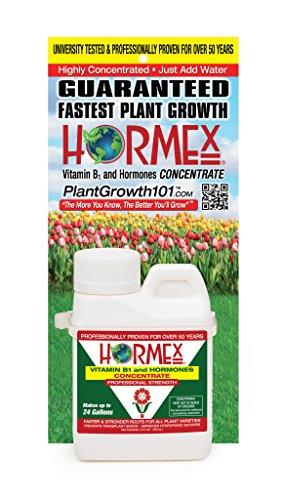 hormex-vitamin-b1-and-hormones-concentrate-4oz