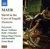 echange, troc  - Mayr: David In Spelunca Engaddi