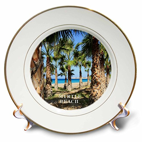 3dRose cp_80856_1 Palms Line Myrtle Beach South Carolina Porcelain Plate, 8-Inch