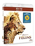 Image de Félins - Inclus le documentaire Pollen [Blu-ray]