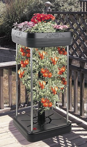The Upside-down Tomato Garden