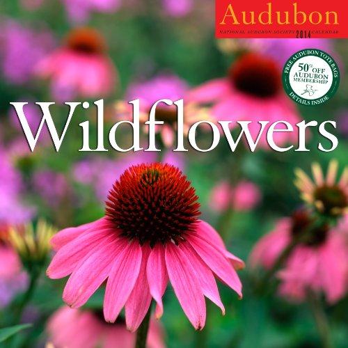 Audubon Wildflowers Calendar 2014