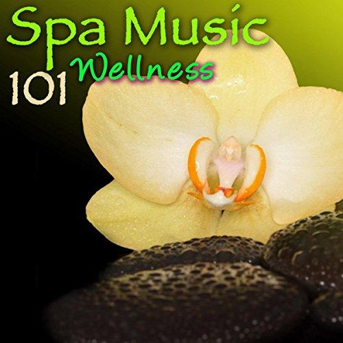 Day Spa (Detox Tea & Massage)