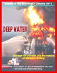 Deep Water: The Gulf Oil Disaster and...