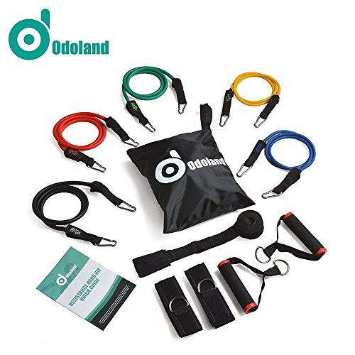 Workout Bands, ODOLAND 11 pcs Resistance Band Set with Door Anchor, Ankle Strap, Exercise Chart, Exercise Band Set with Heavy Duty Bands (Band Workout Chart compare prices)