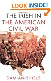 The Irish in the American Civil War (Irish in the World)