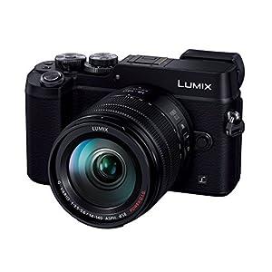 Panasonic ミラーレス一眼カメラ ルミックス GX8 レンズキット 高倍率ズームレンズ付属 2030万画素 ブラック DMC-GX8H-K