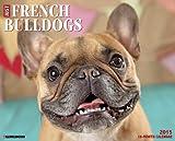 Just French Bulldogs 2015 Wall Calendar