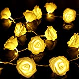 PANICTECH 2014 NEW 2.5M 20 LED Rose String Fairy Battery Operated Light for Wedding Christmas,Party Holiday(Warm White)