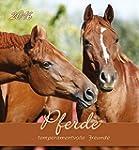 Pferde 2016 - Horses - Postkartenkale...